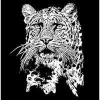 leopard-poster-bw