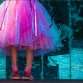Tippy Toes by Maggie Morris (AB Grade) MERIT