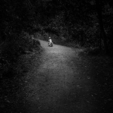 In To The Unknown by Robert Zappia (A Grade) MERIT