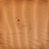 Desert critter trail by Judith Bear (AB Grade) MERIT