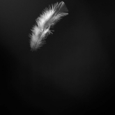Heaven Sent by Kathlyn Tedder (AB Grade) MERIT
