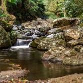 Picnic Rock Creek by Greg McMillan (AB Grade) MERIT